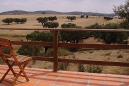 Learn more about Alentejo sing - Wandering Life