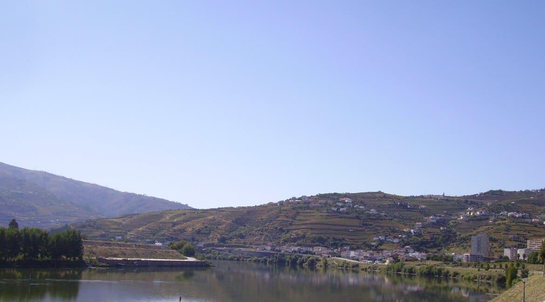 Meet the famous Douro region - Wandering Life