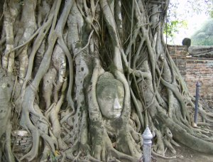 Get to know Ayutthaya, the ancient capital of the kingdom of Siam - Wandering Life