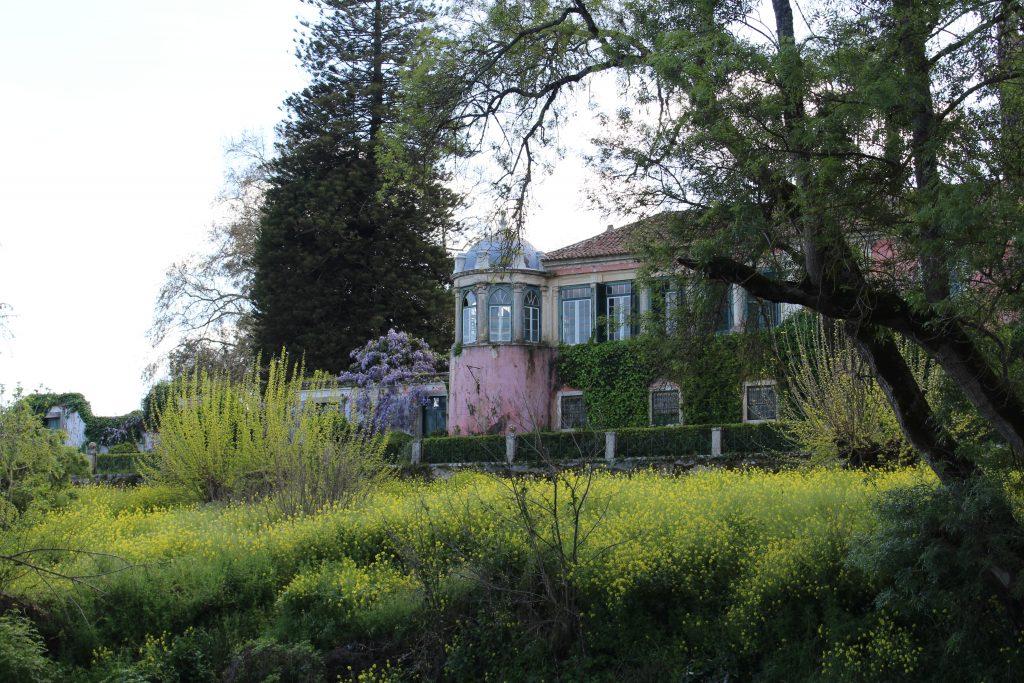 Quinta da Cardiga, Golegã, Portugal