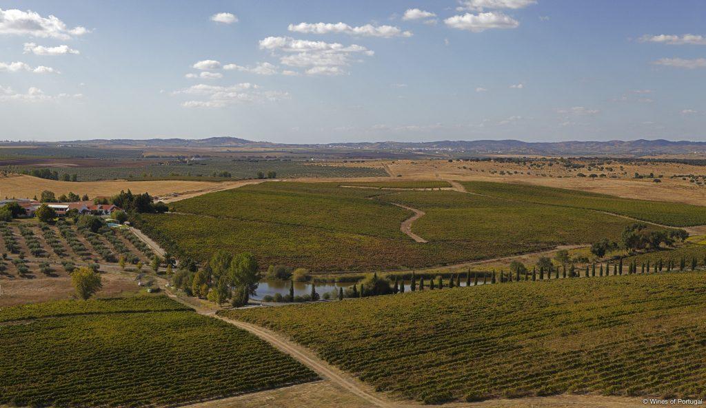 Região do Alentejo (Fonte: Wines of Portugal)