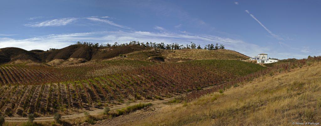 Região do Algarve (Fonte: Wines of Portugal)