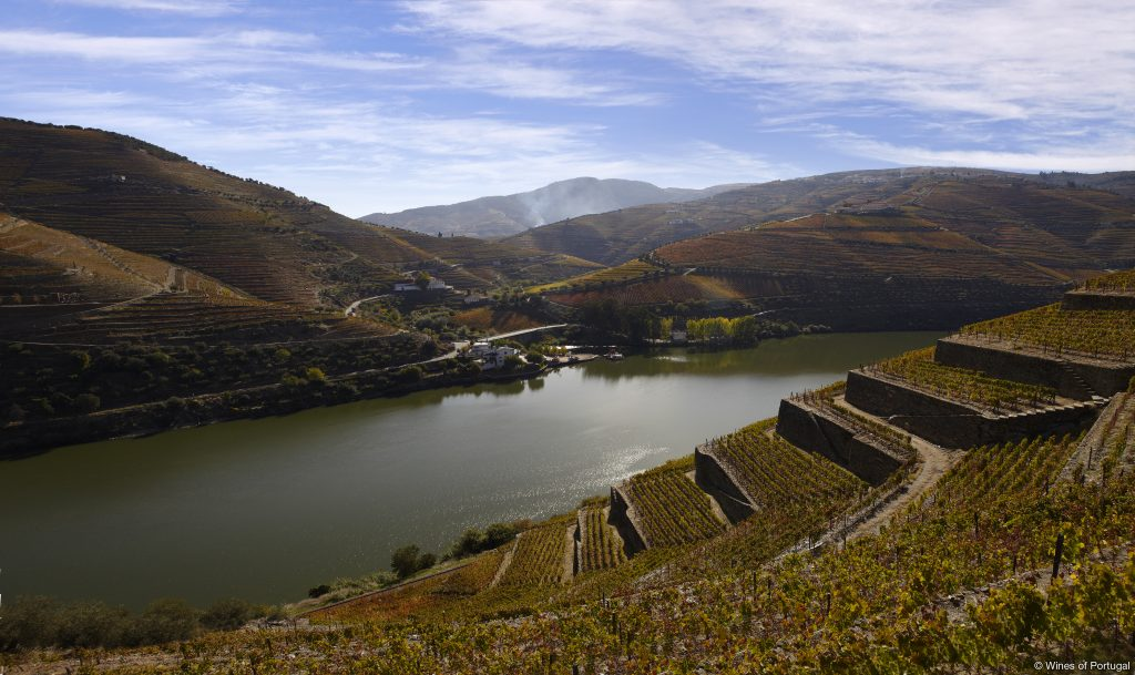 Região do Douro (Fonte: Wines of Portugal)