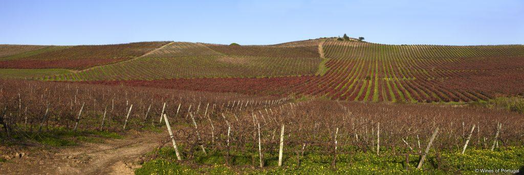Região de Lisboa (Fonte: Wines of Portugal)
