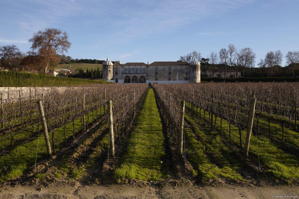 Região da Península de Setúbal (Fonte: Wines of Portugal)