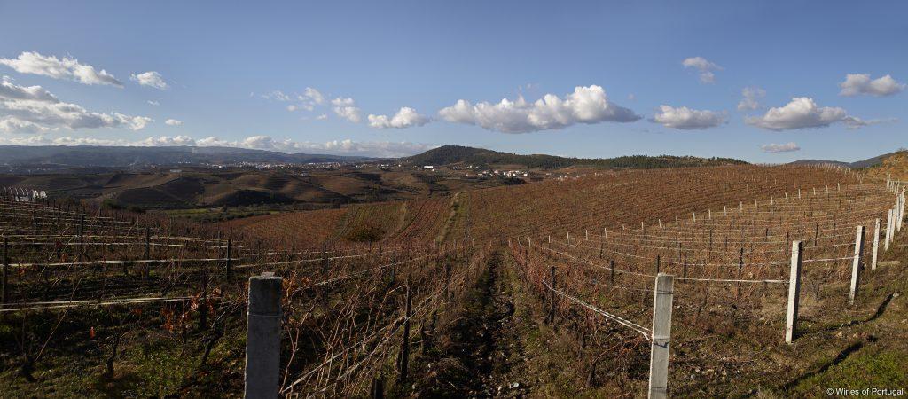 Região de Trás-os Montes (Fonte: Wines of Portugal)
