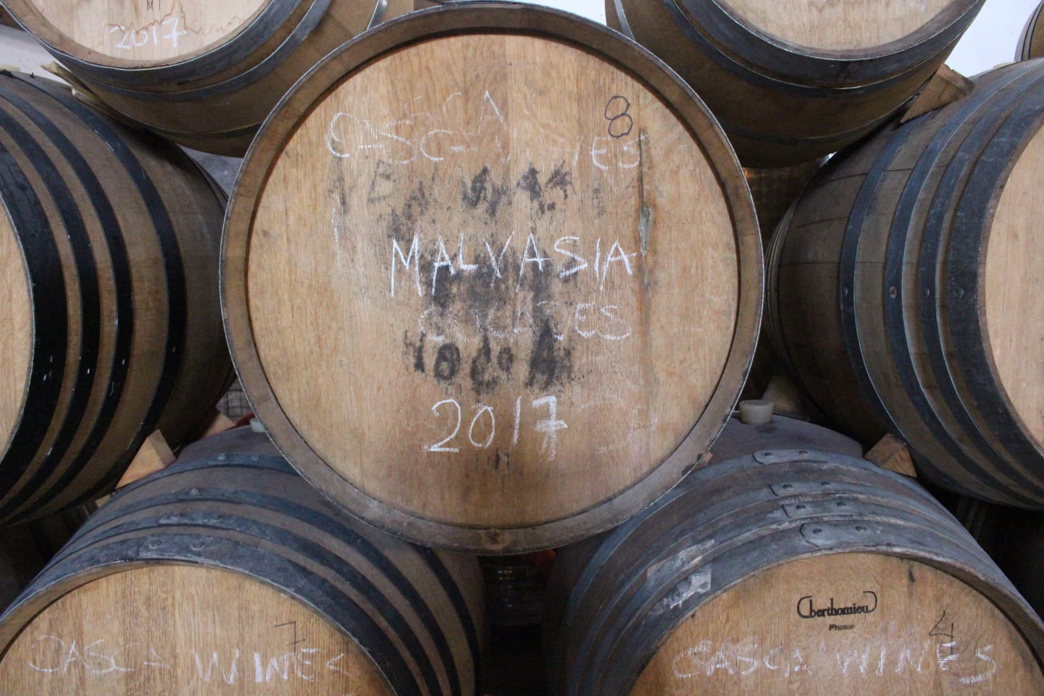 Pipa com vinho de casta Malvasia (Adega Viúva Gomes)