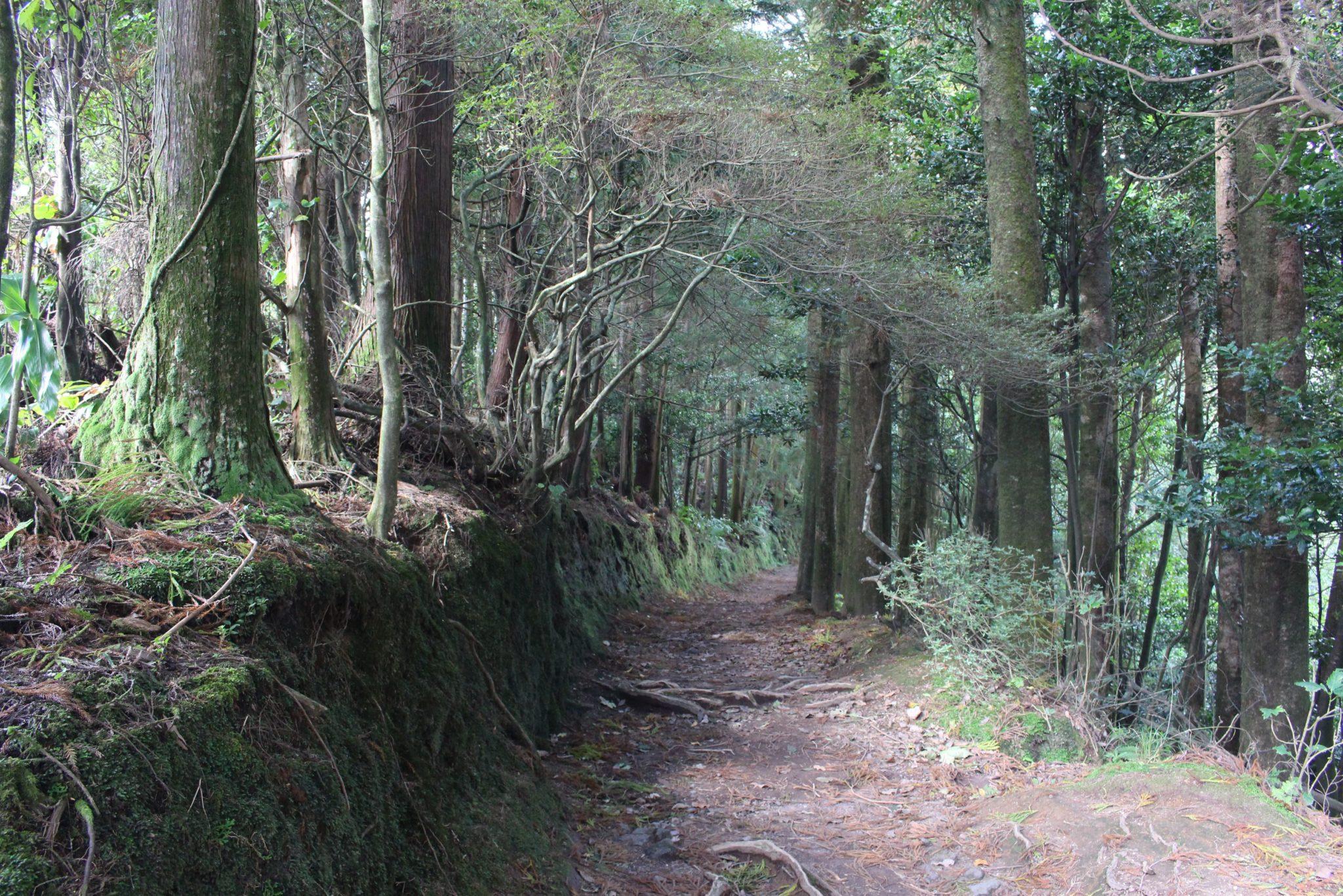 Acesso à Lagoa do Congro, S. Miguel, Açores