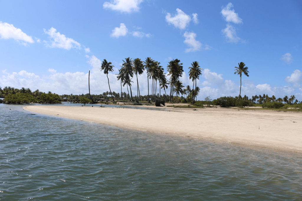 Praia em Maragogi