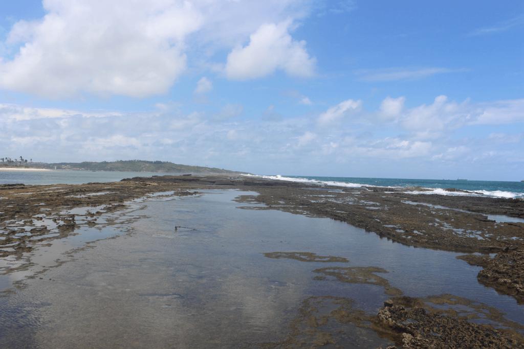 Arrecife da Baía de Suape
